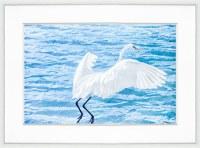 "34"" x 44"" Coastal Bird Taking Flight Framed Print"