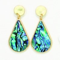 Gold With Abalone Earrings