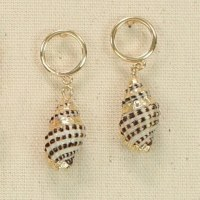 Gold With Shells Earrings