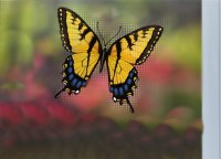 "4"" Yellow Butterfly Screen Saver"