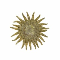 "4-6.5"" Aztec Starfish"