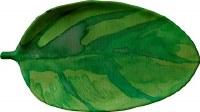 """10"""" x 18"""" Green Tropical Leaf Tray"""