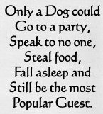 "26"" x 16"" Only A Dog Could Go To A Party Kitchen Towel"
