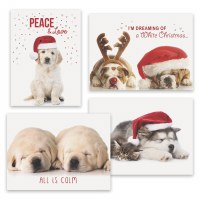 "Box of 16, 8"" x 6"" Assorted Puppy Christmas Cards"