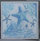 "24"" Square Blue and White Starfish Framed Canvas"