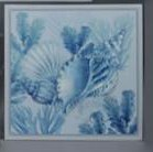 "24"" Square Blue and White Whelk Shell Framed Canvas"