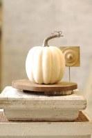 """7"""" Cream Pumpkin"""