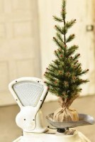 """26"""" Green Pine Tree With Red Ball Tips"""
