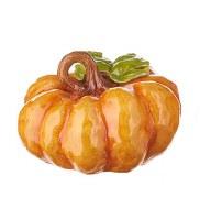 "5.5"" Orange Squat Pumpkin"
