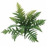 "16"" Faux Green Broad Fern Bush"