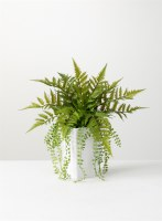 "17"" Faux Fern in White Square Pot"