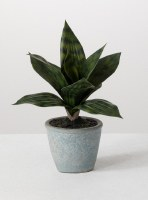 "10"" Faux Green Sansevieria in Blue Pot"