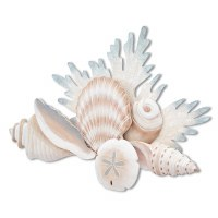 """27"""" Gray Muted Pastel Shell Reef"""