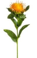 """10"""" Faux Orange Pincushion Protea Spray"""