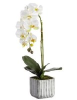 """22"""" Faux White Phaleo Orchid Plant in Cement Pot"""
