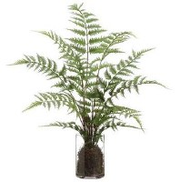 """25"""" Faux Green Forest Fern in Round Glass Vase"""