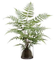 """30"""" Faux Green Forest Fern in Round Glass Vase"""