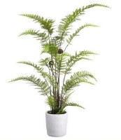 "38"" Green Leather Fern in White Pot"