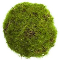 """3"""" Faux Green Moss Orb"""