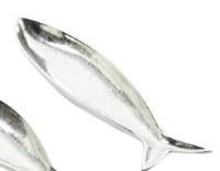 """24"""" Silver Aluminum Fish Dish"""