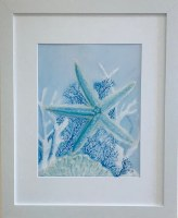"""16"""" x 13"""" Blue Starfish and Coral White Framed Wall Art"""