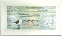 """29"""" x 49"""" Seagull and Sandpiper Gel Textured Print in White Frame"""