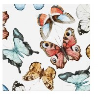 """5"""" Square Multicolor Butterfly Beverage Napkins"""