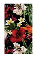 """5"""" x 8"""" Midnight Tropical Guest Towels"""