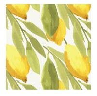 "5"" Square Yellow and Green Lemons Beverage Napkins"