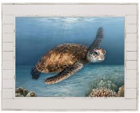 """40"""" x 50"""" Sea Turtle Canvas in Distressed White Shiplap Frame"""