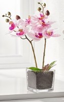 "13"" Faux White and Purple Orchid in Square Glass Pot"