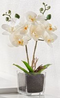 "13"" Faux White Orchid in Square Glass Pot"
