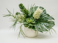 "16"" Green Succulent and Tropical Leaf Arrangement in White Pot"