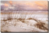 """38"""" x 60"""" Purple Sunset Whispers in the Dunes Canvas Wall Art"""