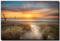"38"" x 60"" Sandy Walk At The Dunes Canvas Wall Art"