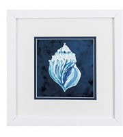 """11"""" Square White and Blue Conch on Dark Blue Background With White Frame"""