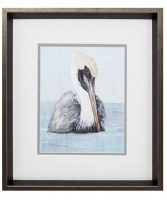 """17"""" x 15"""" White and Gray Pelican Portrait With Brown Frame"""