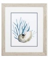 "22"" x 19"" White Nautilus in Blue Seaweed in Wood Frame"