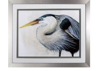 "24"" x 28"" Blue Heron Looking Left With Silver Frame"