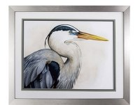 "24"" x 28"" Blue Heron Looking Right With Silver Frame"