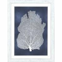 "46"" x 34"" White Sea Fan on Blue I Wall Art in Whitewashed Wood Frame"