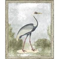 "33"" x 27"" Yellow Beak Blue Crane Wall Art in Silver Frame"