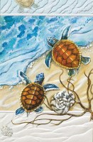 """8"""" x 5"""" Two Turtles Thank You Card"""