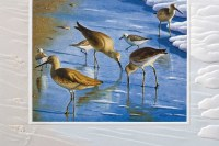 """5"""" x 8"""" Sandpipers Thank You Card"""