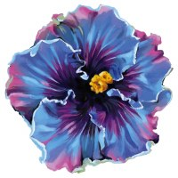 "4"" Blue and Purple Hibiscus Radiant Floral Screen Saver"