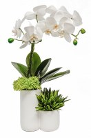"""18"""" White Orchid and Grasses in Two Tiered White Ceramic Vase"""