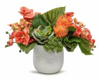 """15"""" Coral Orchid and Succulent Arrangement in Silver Ginny Pot"""