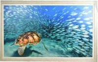 """41"""" x 66"""" Turtle With Fish Gel Textured Print in Gray Frame"""