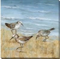 "16"" Square Blue and Tan Sandpiper Trio Embellished Canvas Wall Art"