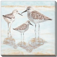 "24"" Square Light Blue and Tan Sandpiper Family Canvas Wall Art"